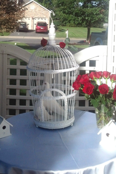dove display and red roses